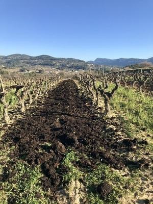 vignoble Cadière d'Azur